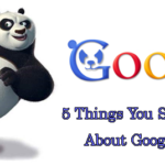 5 Things You Should Know About Google Panda