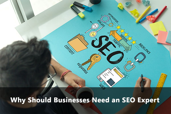 Why Should Businesses Need an SEO Expert